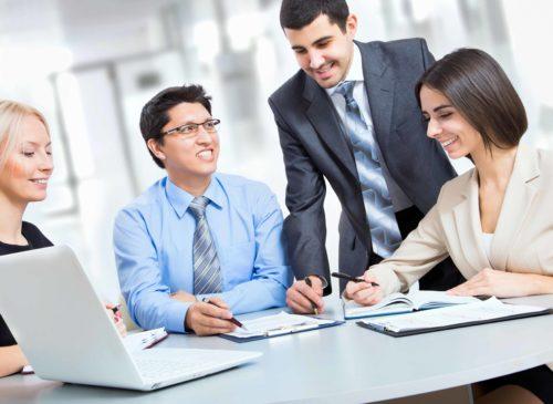 Organizations and Leaders Development